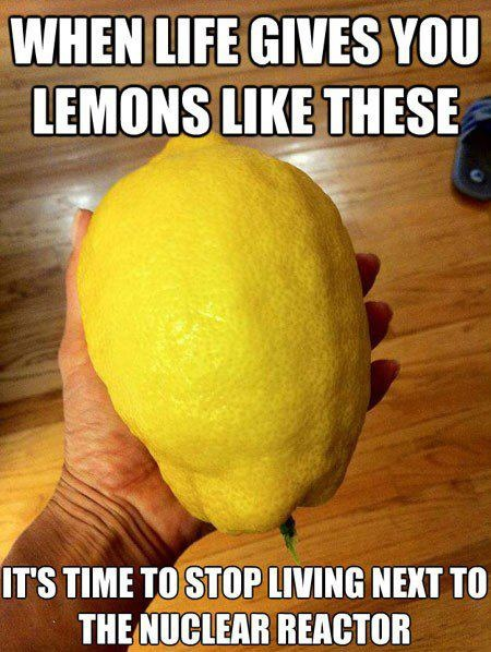when life gives you lemons like these meme