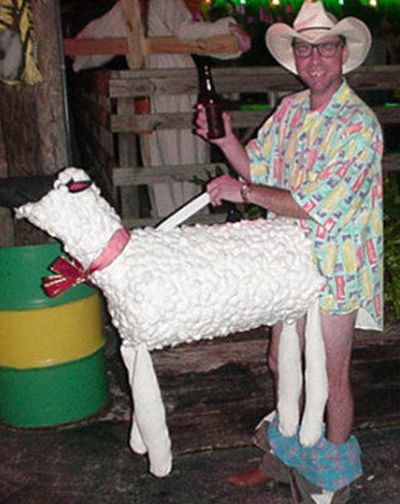 Funny Halloween costume shagging the sheep