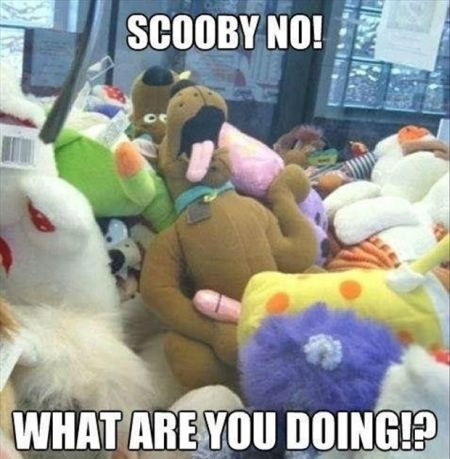 Scooby doo what are you doing funny meme