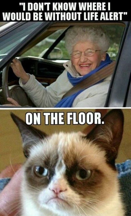 I don't know where I would be grumpy cat