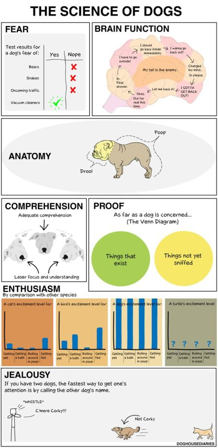 the science of dogs funny