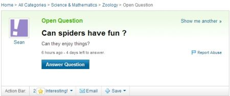 can spiders have fun yahoo question
