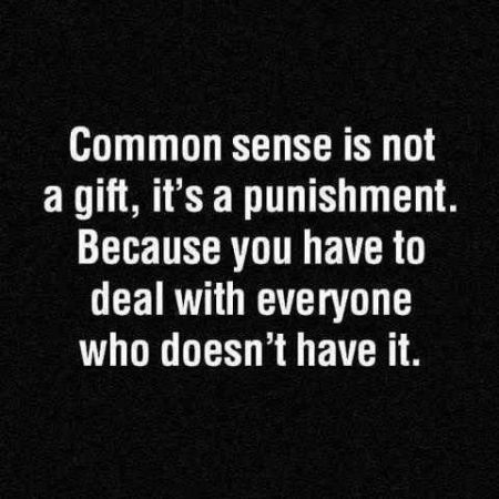 common sense is not a gift quote