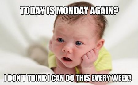 today is Monday again meme