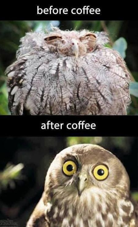 before and after coffee meme