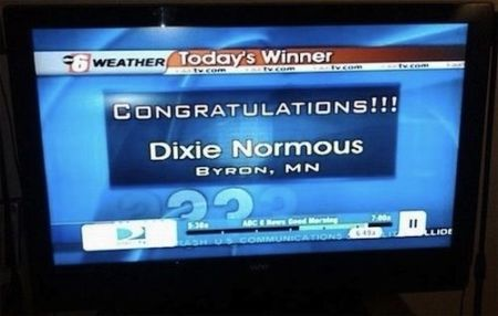 Dixie normous funny