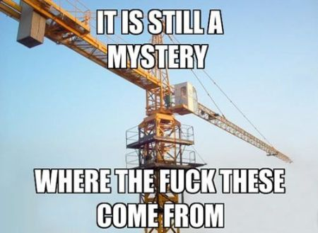 it is still a mystery crane meme