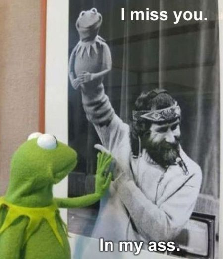 I miss you Kermit funny