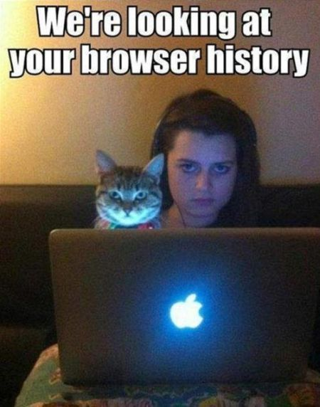 we're looking at your browser history