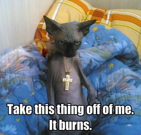 take this thing off me it burns cat meme