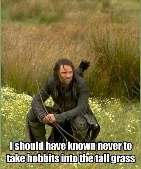never take hobbits into tall grass