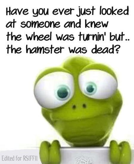 the wheel was turning but the hamster was dead funny
