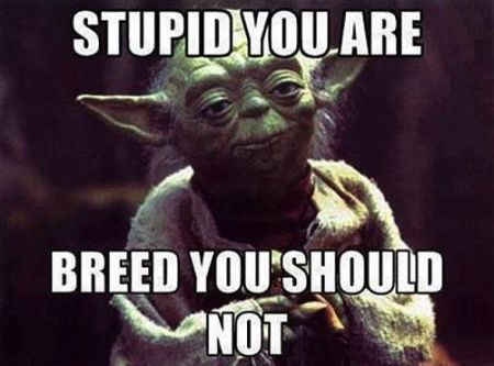 you are stupid: