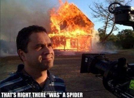 there was a spider meme