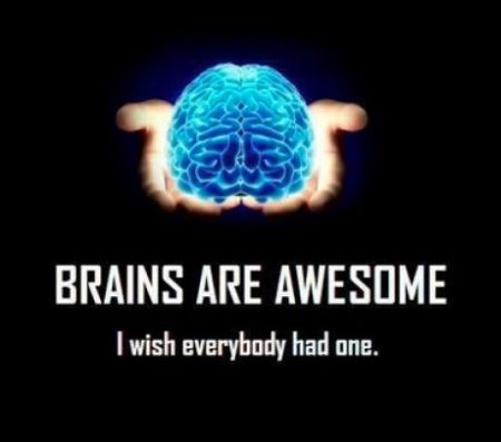 brains are awesome funny