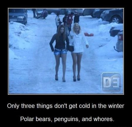 only 3 things don't get cold in the winter