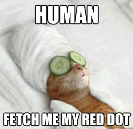 Human fetch me my red dot meme