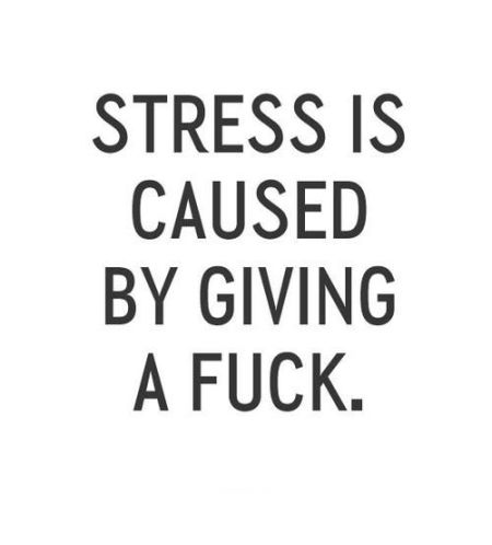 Stress is caused by giving a f*ck at PMSLweb.com