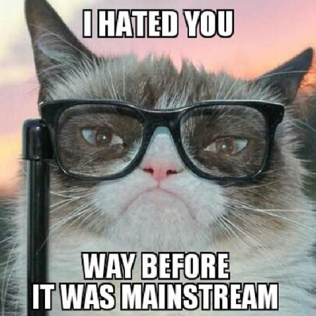 Grumpy cat I hated you - Weekend Humor at PMSLweb.com