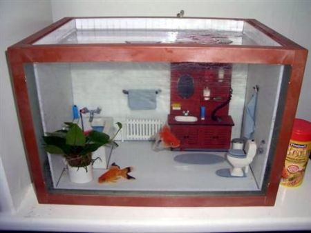 Awesome fish tank at PMSLweb.com