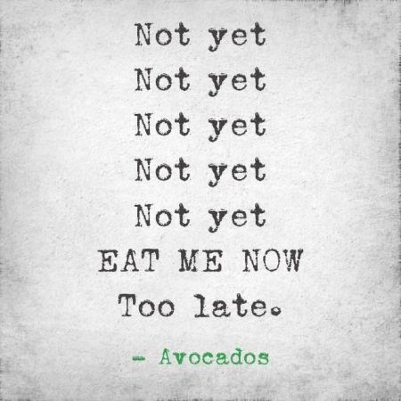Eat me now avocados funny - Hump Day fun at PMSLweb.com
