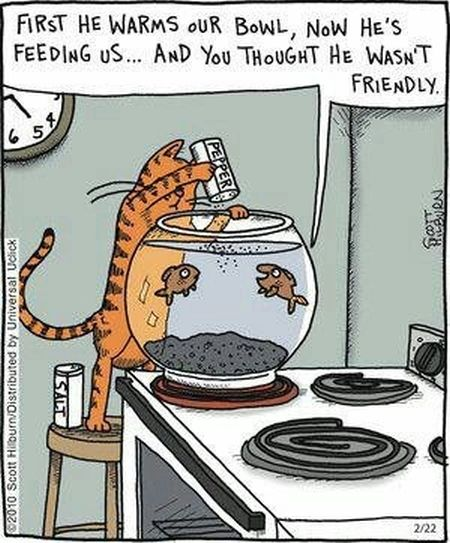 Cat cooking fish cartoon at PMSLweb.com