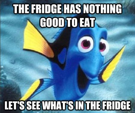 The fridge has nothing good to eat meme - Weekend Humor at PMSLweb.com