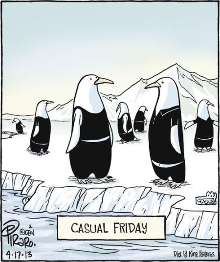 Penguins casual Friday cartoon - Funny picture at PMSLweb.com