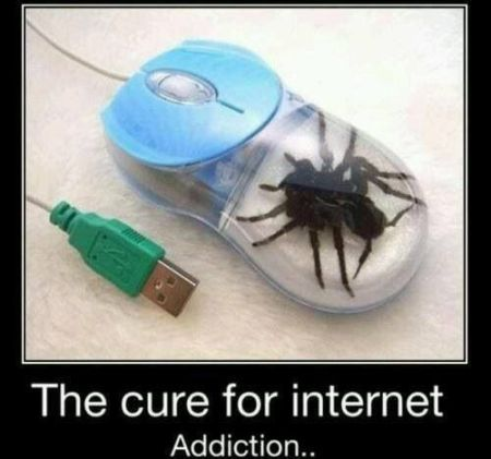 Cure for internet addiction - Hump Day fun at PMSLweb.com