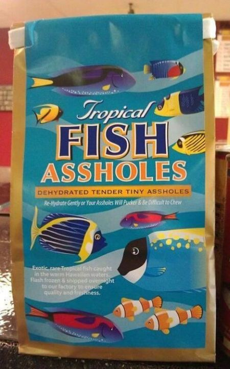 Tropical fish a**holes at PMSLweb.com