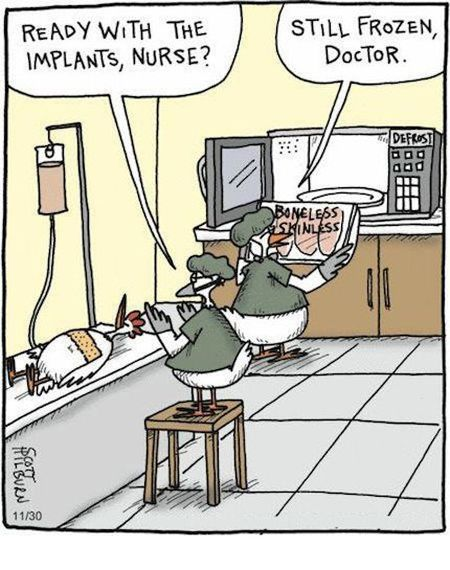 Chicken breast implants cartoon at PMSLweb.com