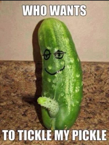 Who wants to tickle my pickle - TGIF humor at PMSLweb.com