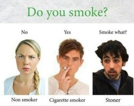 Do you smoke funny at PMSLweb.com