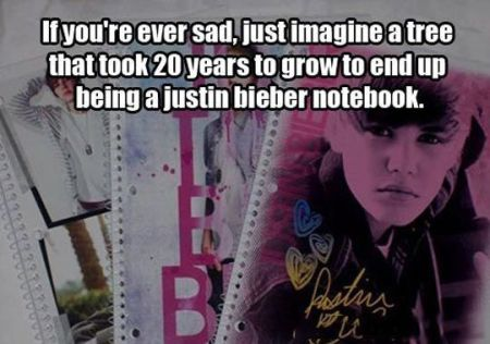 a tree who ends up as a justin bieber notebook