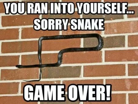 Sorry snake game over at PMSLweb.com