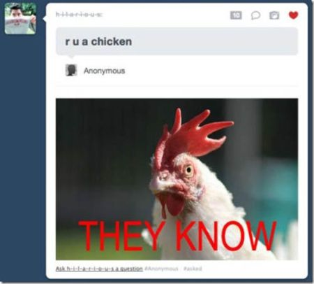You are a chicken, tumblr humor – Friday laughter at PMSLweb.com