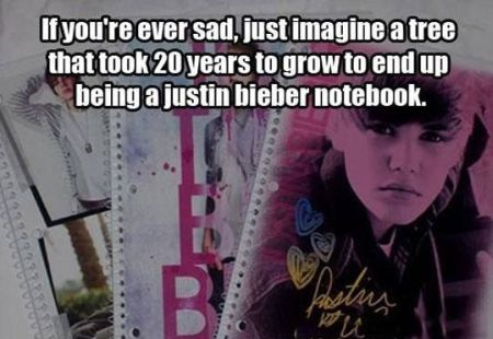 Tree took 20 years to grow up to turn into a Bieber notebook at PMSLweb.com