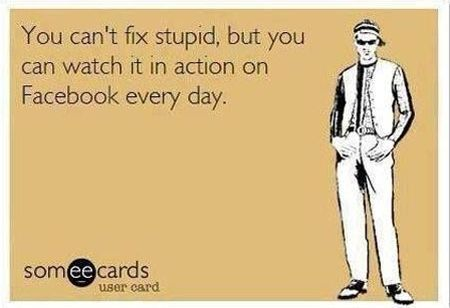 You can't fix stupid ecard – Monday funnies at PMSLweb.com