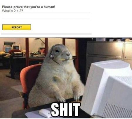 Prove that you're a human - Thursday funnies at PMSLweb.com