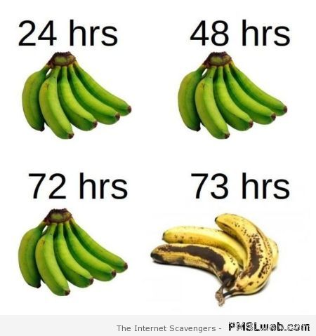 Banana logic humor – Tgif picture collection at PMSLweb.com