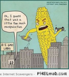 12-GMO-corn-cartoon
