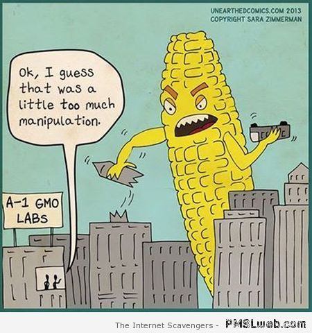 GMO corn cartoon at PMSLweb.com
