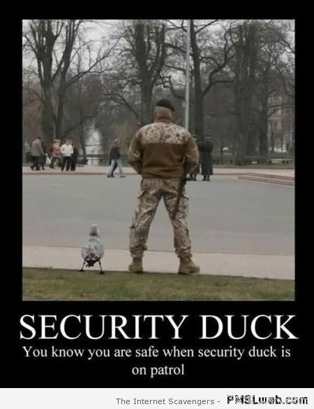 Security duck demotivational at PMSLweb.com