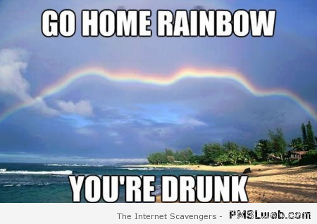Go home rainbow you are drunk at PMSLweb.com