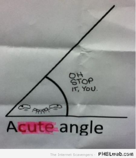 Acute angle funny – Thursday giggles at PMSLweb.com
