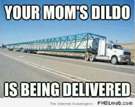 Your mom's dildo is being delivered at PMSLweb.com
