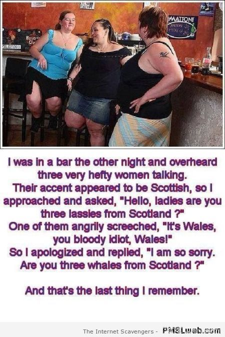 Three whales from Scotland joke at PMSLweb.com