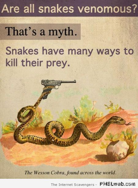 Are all snaked venomous humor at PMSLweb.com