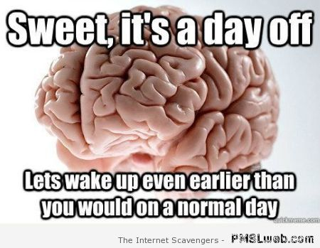 It's a day off brain meme at PMSLweb.com