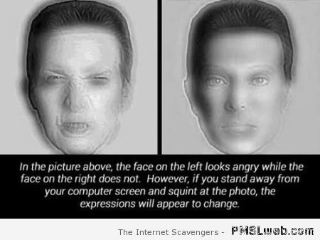 Angry illusion test – Funny picture gallery on PMSLweb.com